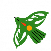 paloma verde